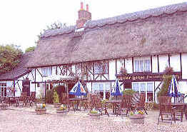 The Willow House