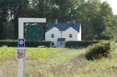 Vine Park Cottage