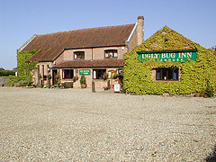 The Ugly Bug Inn