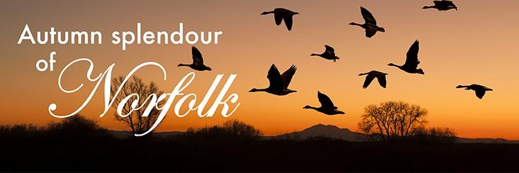 Autumn-splendour-of-norfolk-banner